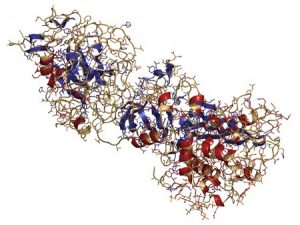Coagulation factor IXa