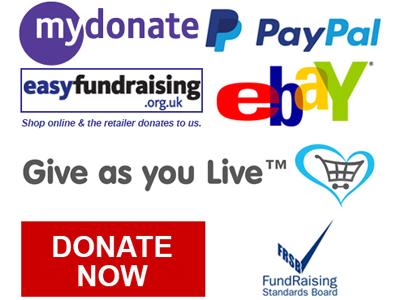 Donate-400