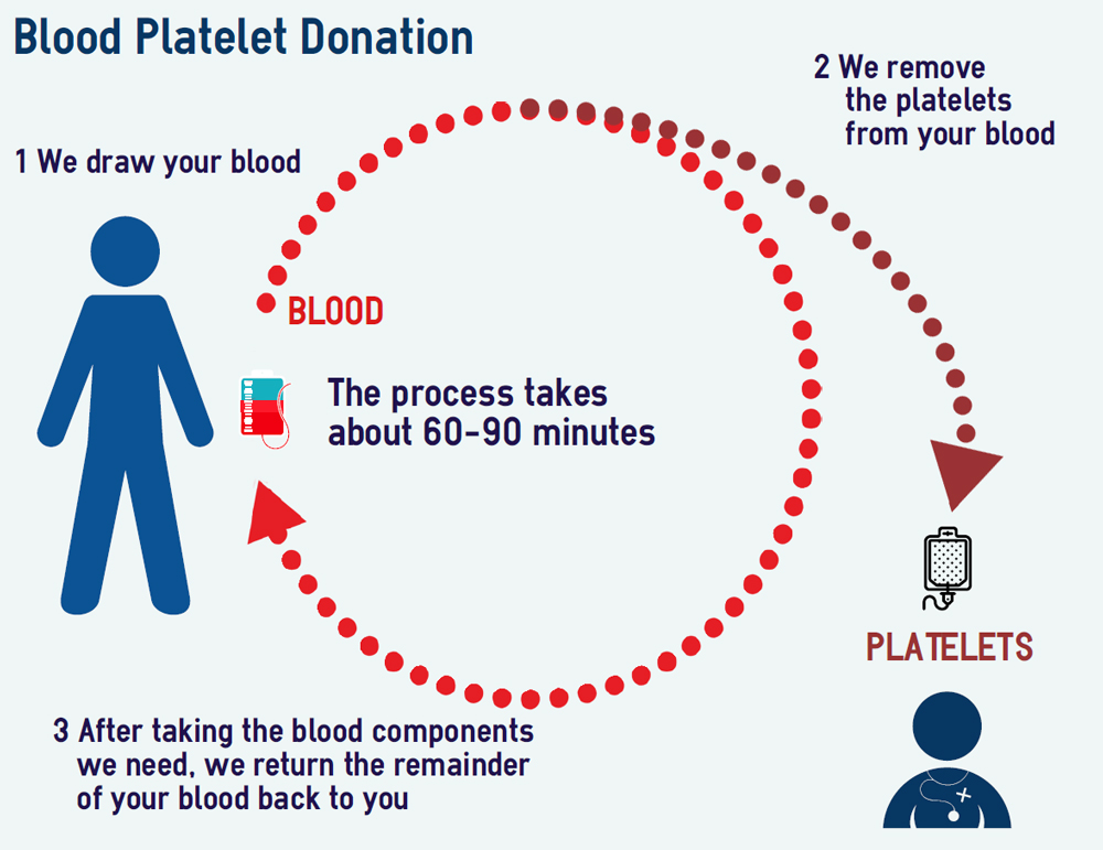 blood platelet donation process